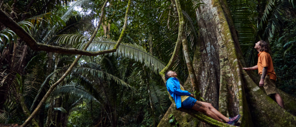 Person laying on large palm tree branch in Belize