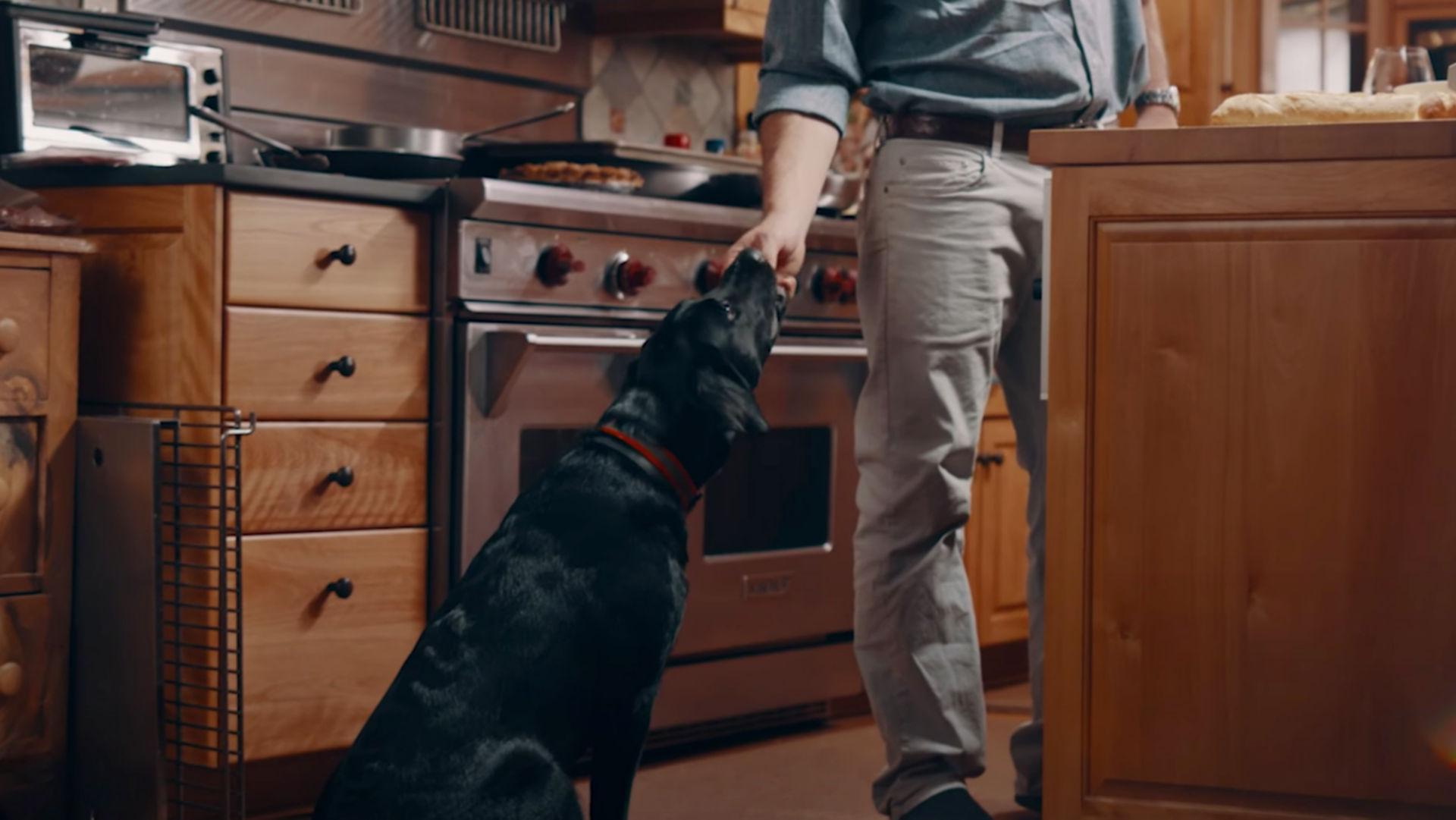 man feeding dog a treat in a kitchen