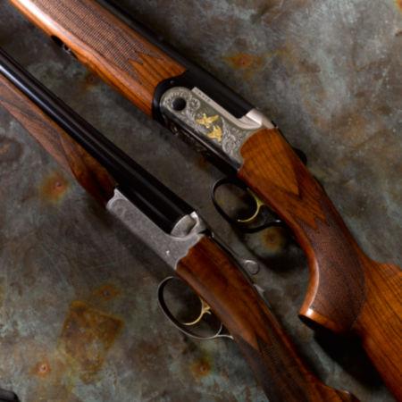 Closeup of shotguns