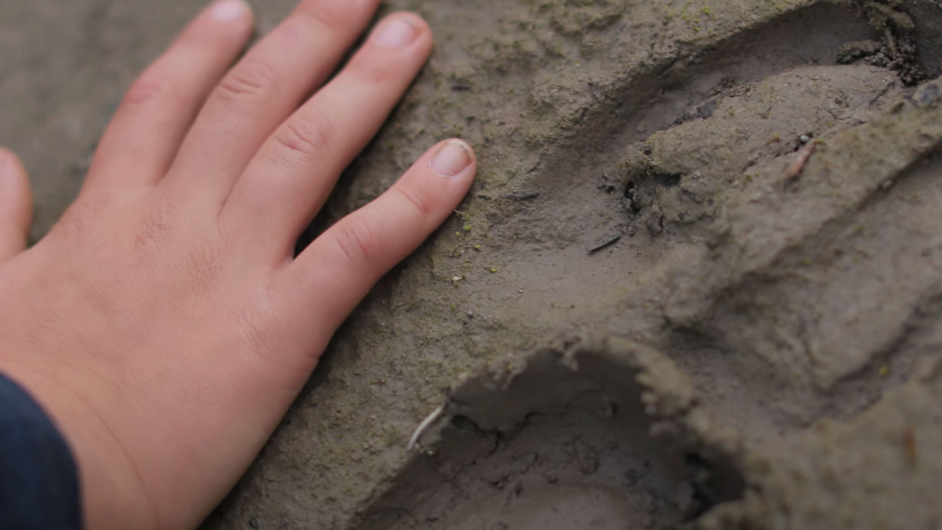 close up of hand resting on muddy earth