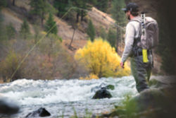 An angler in Oregon casts from riverside.