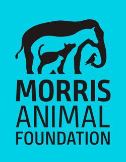 Morris Foundation logo