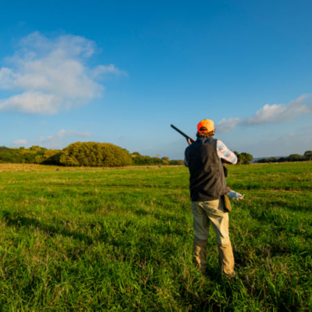 A man holding a shotgun while hunting for grouse in a field