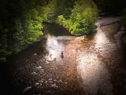 Seen from above, an angler wades in the shallows and casts into the deeper part of the river.