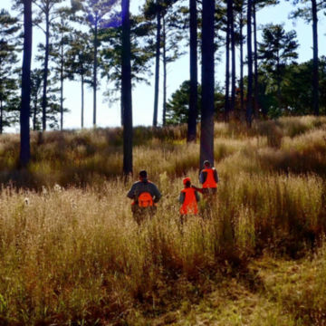 Orvis Two-Day Quail School at Pursell Farms -  image number 2