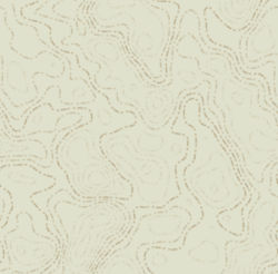 image of topographic lines
