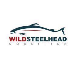 Wild Steelhead Coalition logo