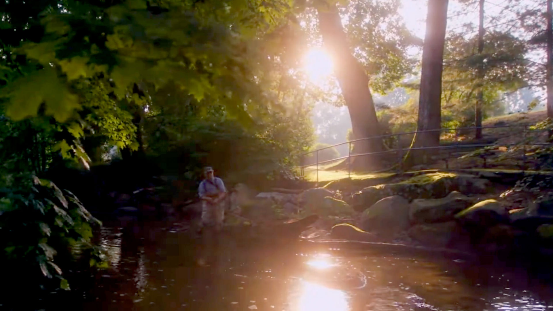 The late day sun shines on a man fishing in a stream.