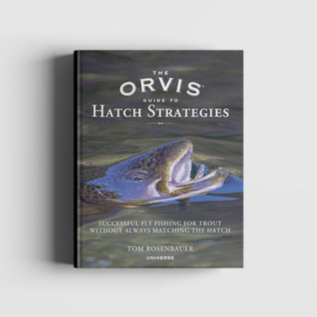 A book with a fish rising up out of the water on the cover